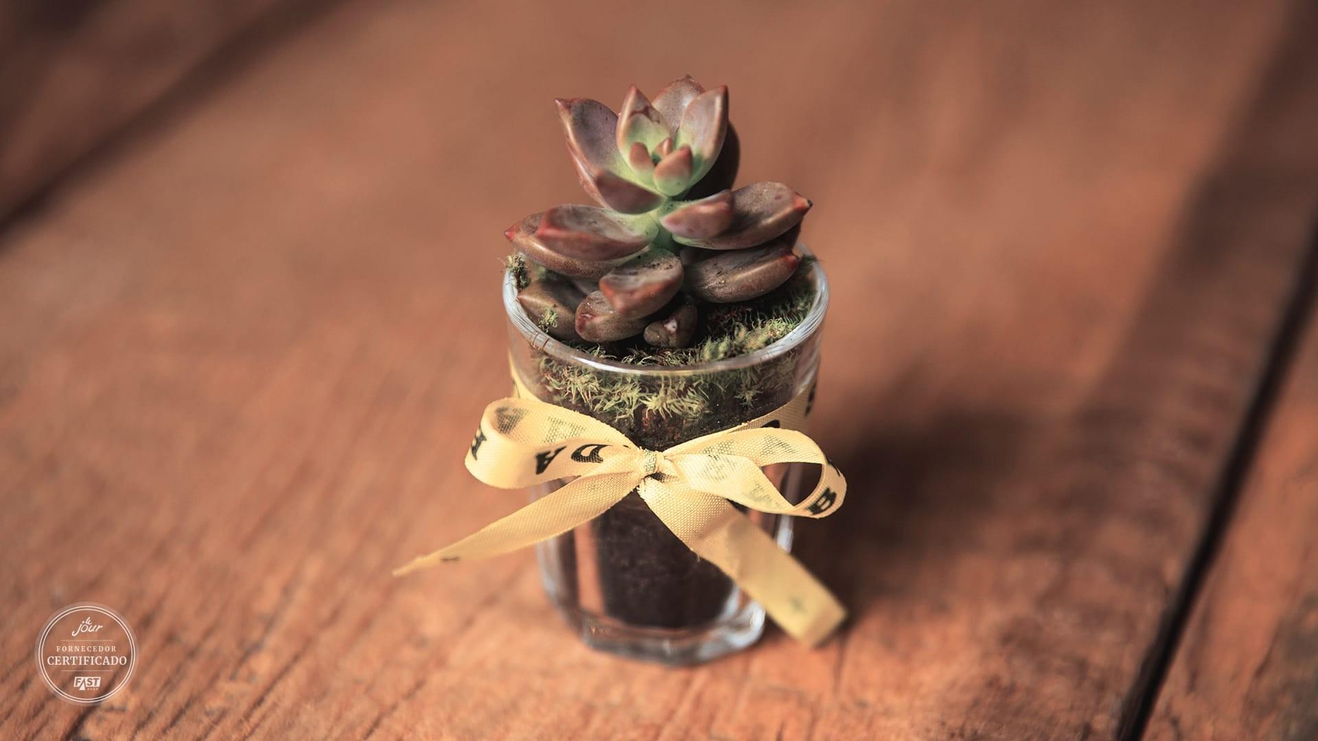 Vasinhos de suculenta para casamentos com detalhe de fita do bonfim, Amô D Flô
