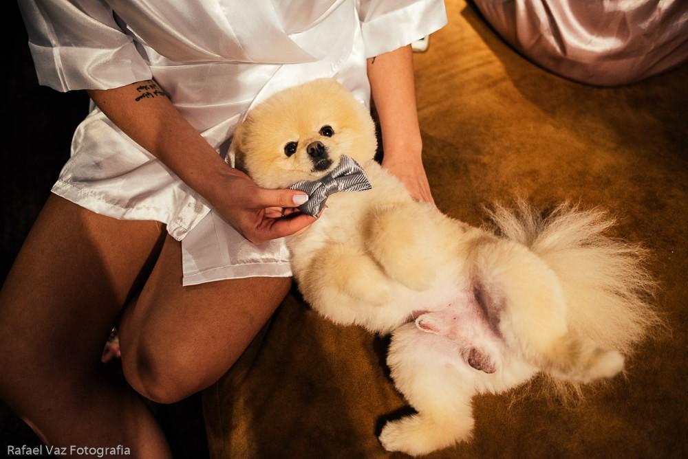 noiva posando com o cachorro
