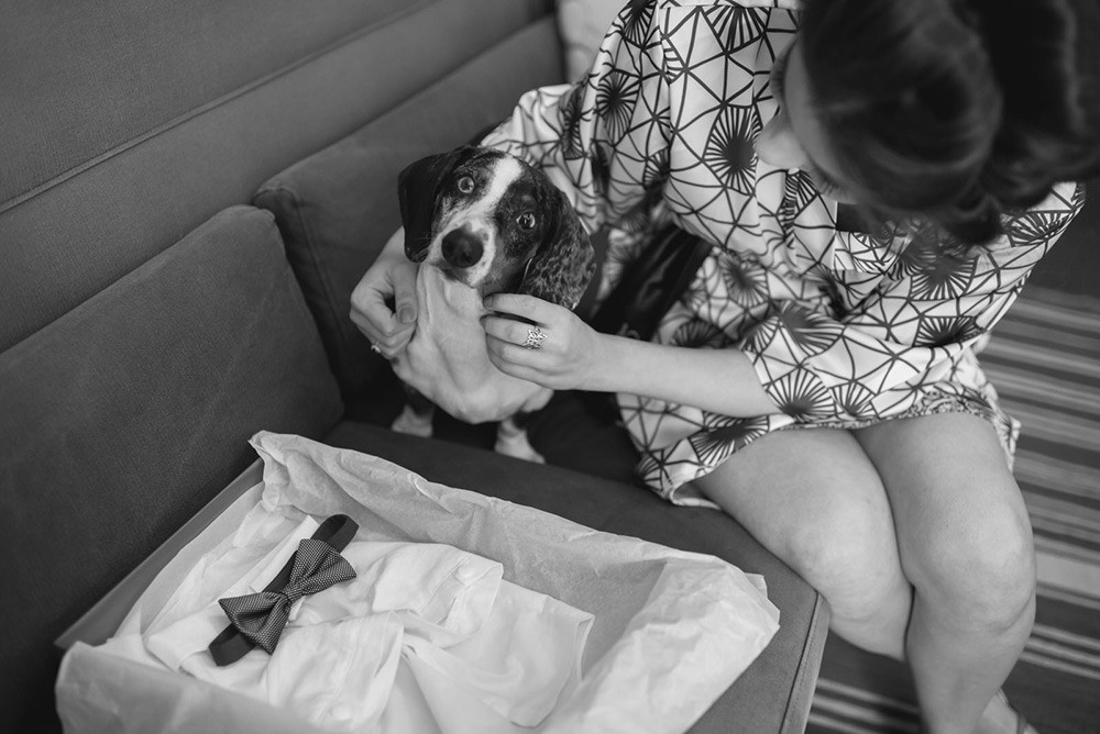 noiva com o cachorro
